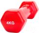 Гантель Bradex SF 0165 (4кг, красный) -