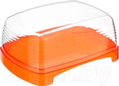 Масленка Berossi Fresh ИК 14050000 (апельсин)