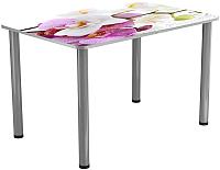 Обеденный стол Васанти Плюс ПРФ 110x70 (алюминий/94) -