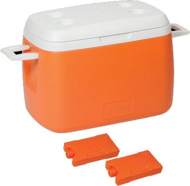 Автохолодильник Forester GS-1008 - общий вид