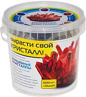 Набор для выращивания кристаллов КАРРАС Волшебные кристаллы (006) -
