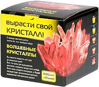 Набор для выращивания кристаллов КАРРАС Волшебные кристаллы (007) -
