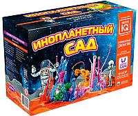 Набор для опытов КАРРАС Инопланетный сад (X021) -