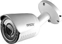 IP-камера Ginzzu HIB-2031S -