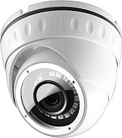IP-камера Ginzzu HID-2031S -