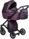 Детская универсальная коляска Anex Cross 2017 2 в 1 (CR09/dark_plum) -
