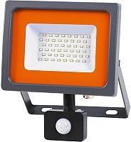 Прожектор JAZZway PFL-SC Sensor 5001411 -