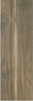 Плитка Ceramika Paradyz Wood Rustic Brown (200x600) -