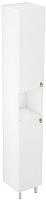 Шкаф-пенал для ванной Triton Реймс 30 (014.11.0300.101.01.01.L) -