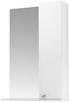 Шкаф с зеркалом для ванной Triton Локо 50 (013.42.0500.101.01.01.R) -