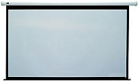 Проекционный экран Classic Solution Norma 308x178 (W 300x168/9 MW-M4/W) -