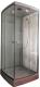 Душевая кабина Coliseum 800 80x80 (серый/тонированное стекло) -