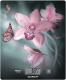 Кухонные весы Scarlett SC-KS57P31 (орхидея) -