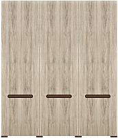 Шкаф Black Red White Azteca S205-SZF3D/21/18 (белый/дуб санремо) -