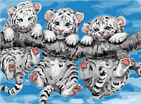 Картина по номерам Picasso Тигрята на ветке (PC3040066) -