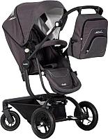 Детская прогулочная коляска EasyGo Soul 2 в 1 (anthracite) -