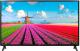 Телевизор LG 43LJ594V -