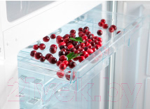 Холодильник с морозильником Snaige RF36SM-S100210