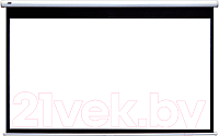 Проекционный экран Classic Solution Lyra 250x193 (E 243x182/3 MW-S0/W) -