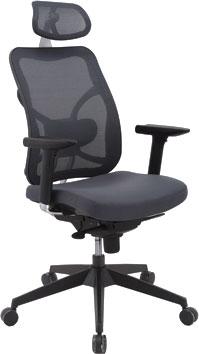Кресло офисное Office4you SAMUEL 20012 - общий вид