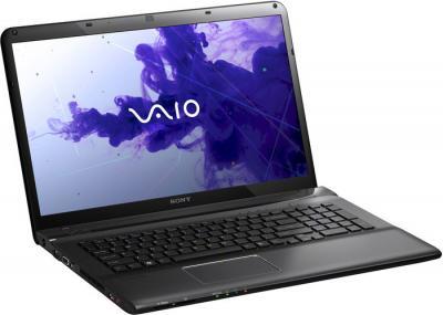 Ноутбук Sony VAIO SVE1713A4RB - общий вид