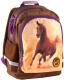 Школьный рюкзак Paso 16-116K -