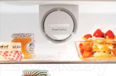 Холодильник с морозильником Liebherr C 3523