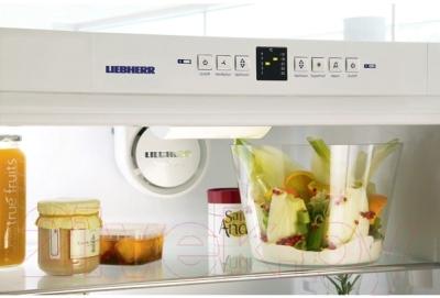 Холодильник с морозильником Liebherr C 4023
