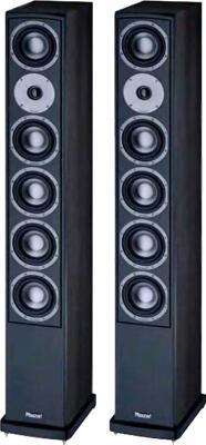 Акустическая система Magnat Vector 208 (Black) - общий вид