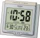 Электронные часы Casio DQ-750-8ER -