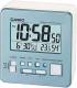 Электронные часы Casio DQ-981-2ER -