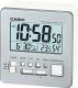 Электронные часы Casio DQ-981-8ER -