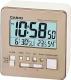 Электронные часы Casio DQ-981-9ER -