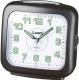 Электронные часы Casio TQ-359-1EF -