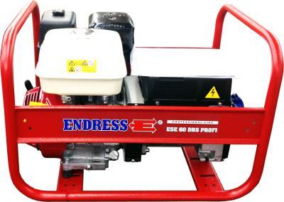 Электростанция Endress ESE 60 DBS Profi - общий вид