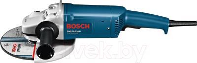 Профессиональная болгарка Bosch GWS 20-230 H Professional (0.601.850.107) - вид сбоку