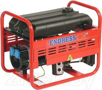 Электростанция Endress ESE 406 HS-GT
