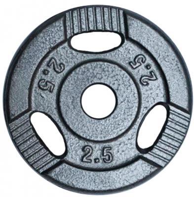 Диск для штанги NoBrand K3-2,5kg (окрашенный) - общий вид