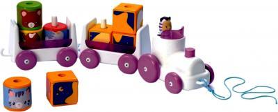 Развивающая игрушка Smoby Паровозик (211216) - общий вид