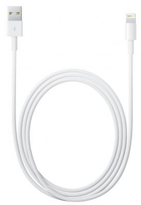 Переходник Apple MD818ZM/A - общий вид