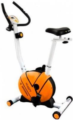 Велотренажер Diadora Maggy - общий вид