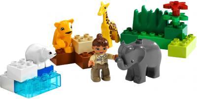 Конструктор Lego Duplo Детский зоопарк (4962) - общий вид