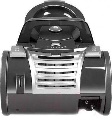 Пылесос Redmond RV-C316 (черный)