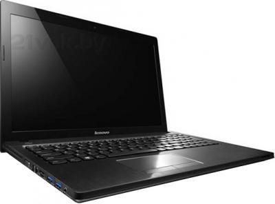 Ноутбук Lenovo IdeaPad G505 (59391951) - общий вид