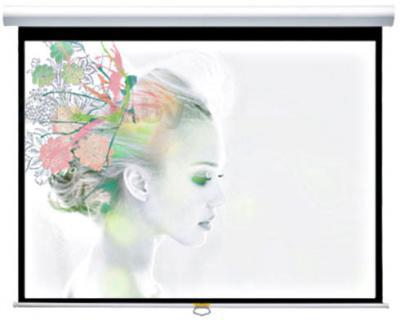Проекционный экран Classic Solution Premier Orion II 244x244 (W 234x176/3 МW-FC/W) - общий вид
