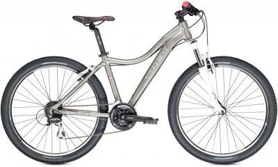 Велосипед Trek Skye SL (19.5, Silver, 2014) - общий вид