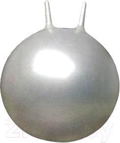 Фитбол с рожками Arctix 339-12550 (серебристый) - общий вид