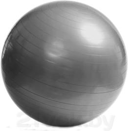 Фитбол гладкий Arctix 339-11750 (серебристый) - общий вид