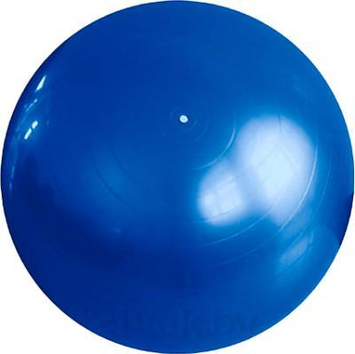 Фитбол гладкий Arctix 339-11900 (синий) - общий вид