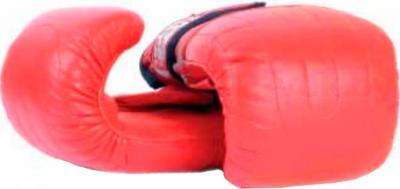 Боксерские перчатки Bulls PM-272-SEN - общий вид
